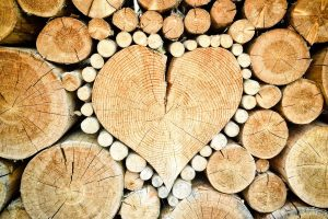 Co oznacza kaloryczność drewna?